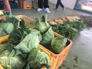 新鮮野菜がたくさん