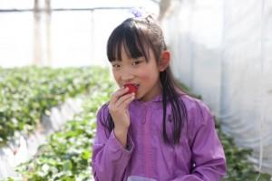 やよい姫を食べる長女8歳